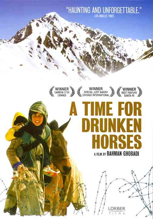 TIME FOR DRUNKEN HORSES BY AHMADI,AYOUB (DVD)